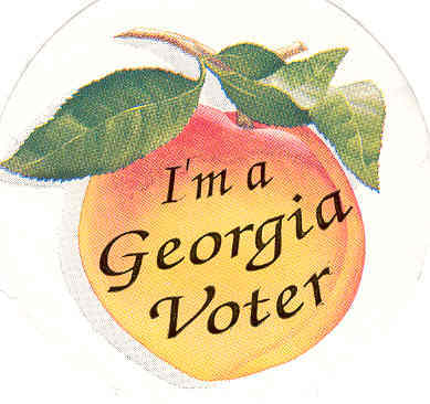 georgiavoter
